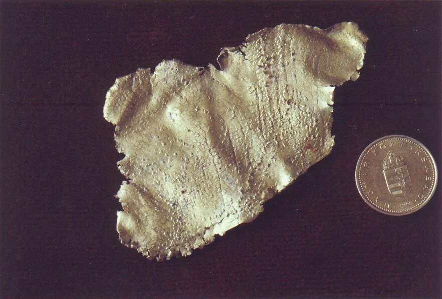 XIX.  századból származó lemezes termésarany lelet Verespatakról.  A Miskolci Egyetem Ásványtani és Földtani Intézet gyűjteményéből